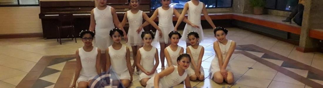 Danza Araucanía 2019